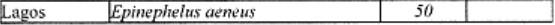 17. madde- çizelgeye- eklenen-satır