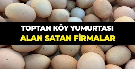 yumurtalarımı satmak istiyorum