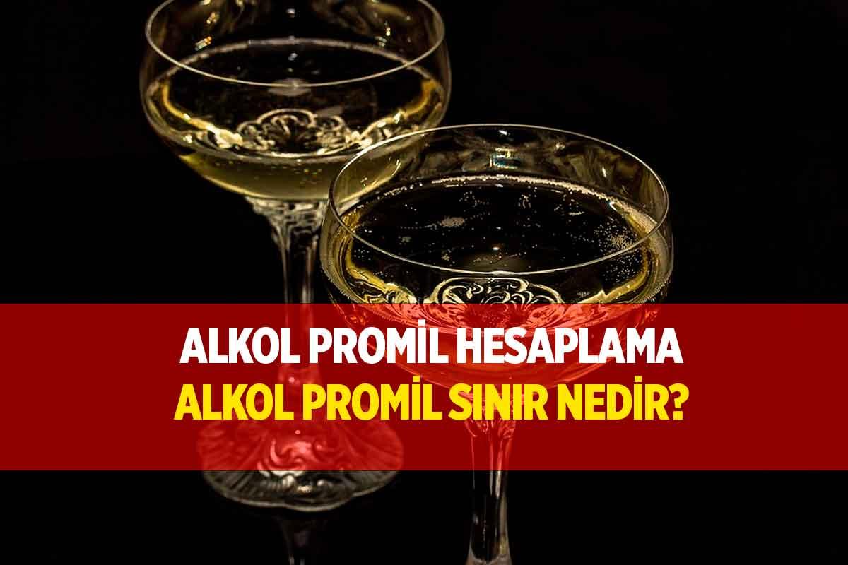 2021 Alkol Promil Sınırı Nedir?