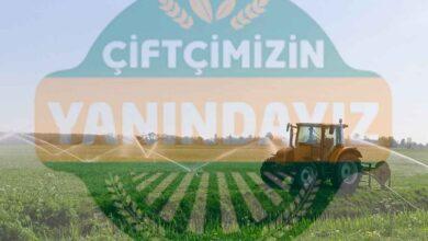 Tarım Kredi Kooperatifi