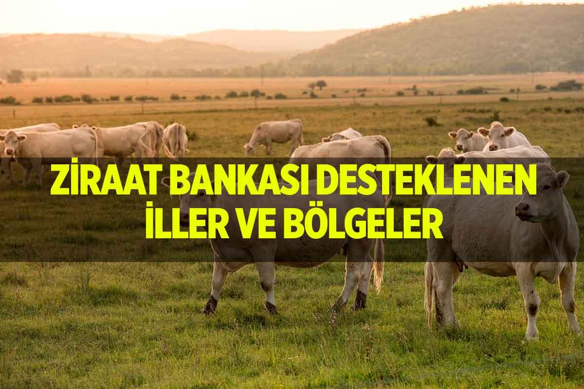 Ziraat Bankası Hayvan Kredilerinde İndirimli İller ve Bölgeler