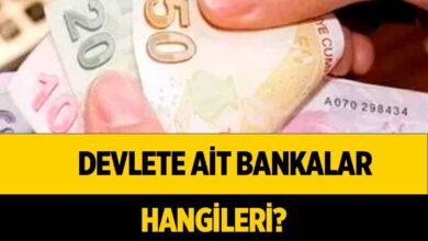 Kamu Bankaları Hangileri?